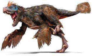RaptorTakeOver